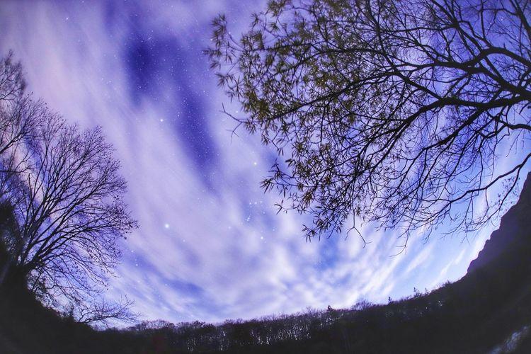 連休明けはテンション⤵︎⤵︎😅頑張るか😂 銀河鉄道の夜♪ 一目惚れんず Star - Space Night Astronomy Milky Way Tree Galaxy Sky Space Nature Constellation Beauty In Nature Low Angle View Mountain Scenics No People Landscape Outdoors Star Trail Close-up おはよう~