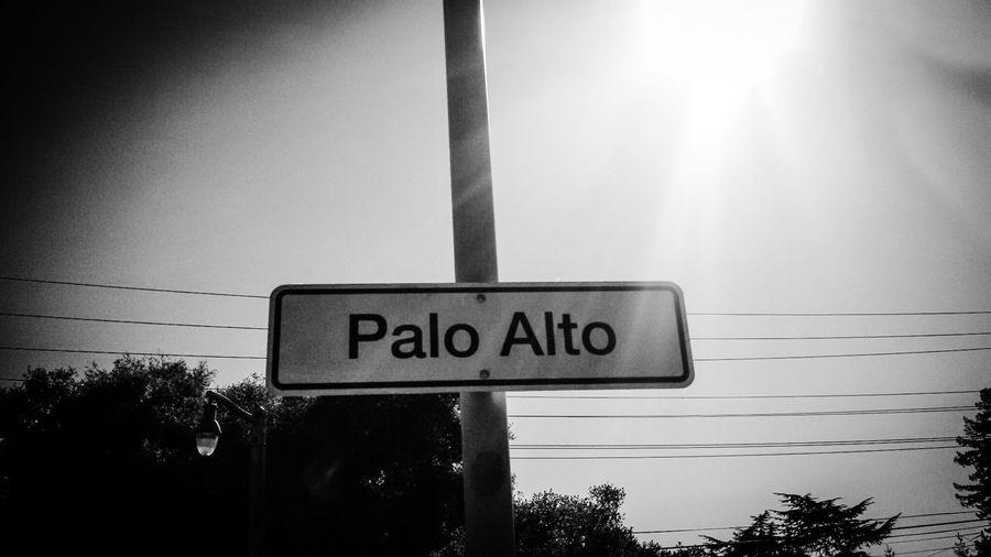 Signs Palo Alto Palo Alto Sucks