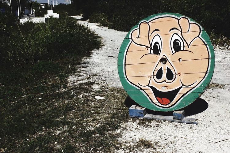 Fun to be dead III Outdoors No People Day Painting Urban Mexico Joke Pig Face