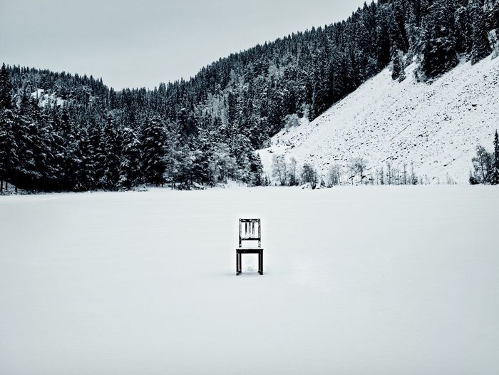 Take a seat Cold Temperature Winter Snow White Color Nature No People Tranquil Scene Beauty In Nature Outdoors Tranquility Landscape Scenics Day Tree 35mm WeekOnEyeEm