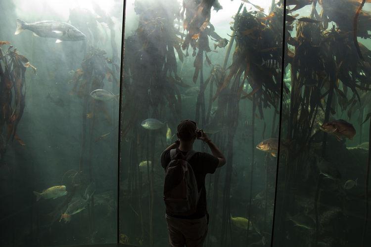 Capetown Nature Aquarium