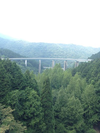 2014.07.21 View Bridge Driving On The Road