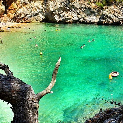 Cala Pola. Tossademar Catalonia Beach Sea