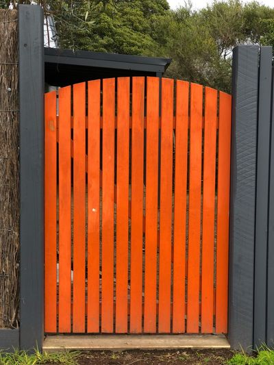 Who knows what lies beyond the orange door? EyeEm Selects Orange Color Day No People Nature Sunlight Safety Security Barrier Boundary Built Structure Wood - Material Architecture Fence Wall - Building Feature