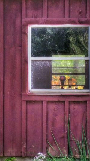 barn study I, autumn thru the window.Fall Beauty Barns Red Windows Reflections Fall Leaves New England  The Architect - 2016 EyeEm Awards