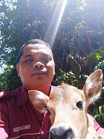 First selfie photo with bali calf EyeEmNewHere Outdoor Landscape Nature The Street Photographer - 2018 EyeEm Awards Portrait Childhood Tree Headshot Looking At Camera Front View Close-up