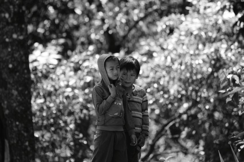 Childhood Children Only Innocence Child One Person Day Leisure Activity People Focus On Foreground One Boy Only Outdoors Boys Standing Males  Nature Grass Tree Black And White Friday
