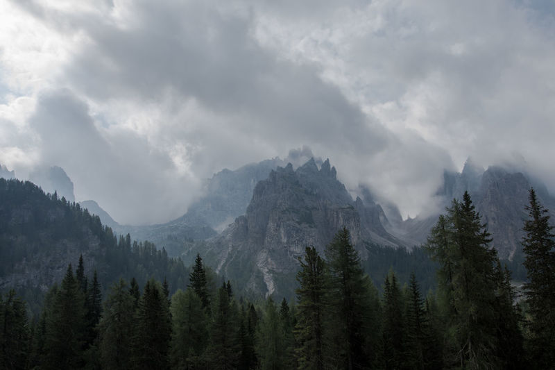somthing with hobbits Beauty In Nature Cloud - Sky Coniferous Tree Environment Exploration Forest High Land Landscape Mountain Mountain Peak Mountain Range Nature No People Non-urban Scene Outdoors Pine Tree Pine Woodland Plant Range Scenics - Nature Sky Tranquil Scene Tree