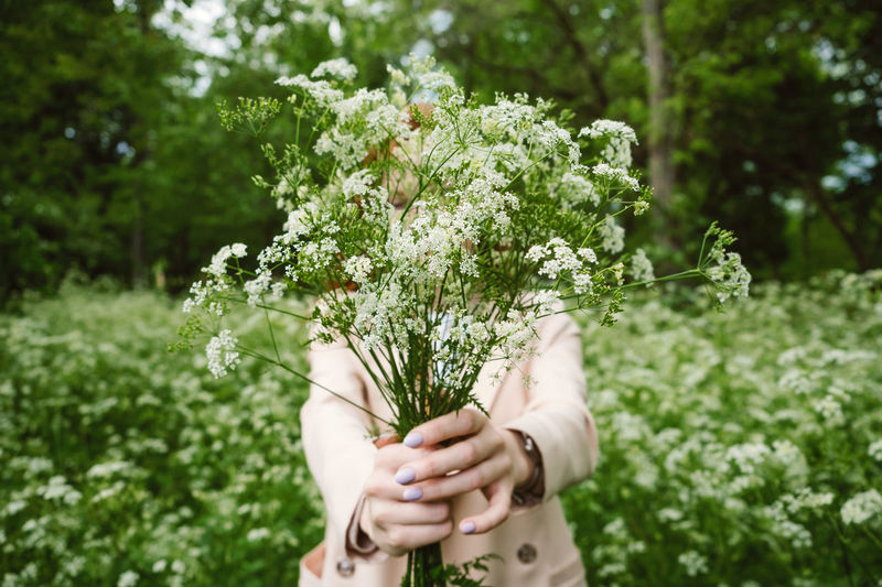 Woman holding flowering plant in forest