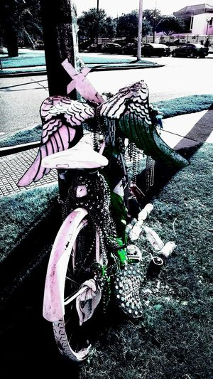 Bicycle Bike Memeorial Bike On Pole Bikes Have Rights Too Cars & Bike Close-up Day Decorated Bike Land Vehicle Memeorial New Orleans Bike Rider Homage New Orleans Bikes Memorialize Death Outdoors Real People Reminder Transportation Tree Vertical Watch For Bikers White Bike
