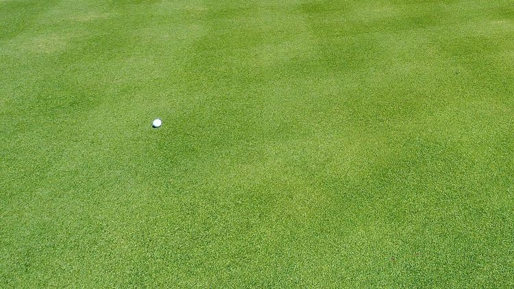 golfball on fairway; pantone color of the year 2017: greenery Abstract Backgrounds Ball Fairway Full Frame Golf Golf Course Golfball Golfing Grass Green - Golf Course Colors Greenery Lawn Minimalism No People Outdoors Lifestyle Simplicity Sport Wallpaper Light Travel Life Nature Done That. Lost In The Landscape