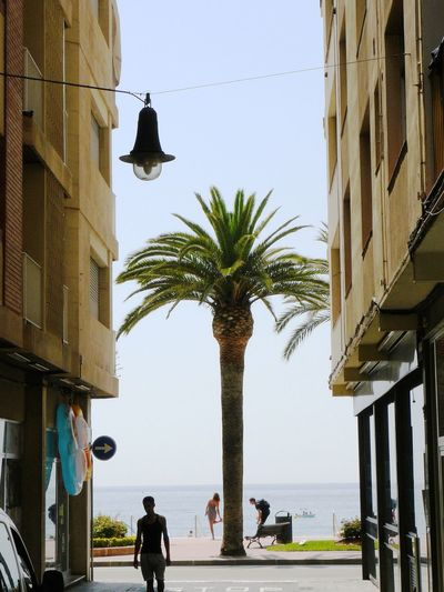Architecture Costa Brava Lloret De Mar Palm Palm Tree Sea Sea And Sky Street Street View View