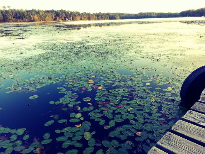 Day at the lake. Photography Beautiful Lake Pretty