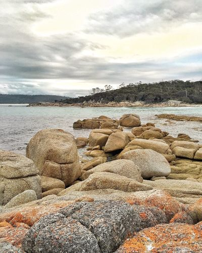 Beautiful Bay of Fires in Tasmania Scenery What A View Travel Photography EyeEm Best Shots IPhoneography Tasmania Beautiful View Australia Beachphotography