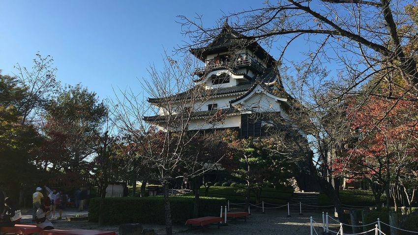 日本 Japan 城 Castle 犬山 Inuyama Inuyama Castle