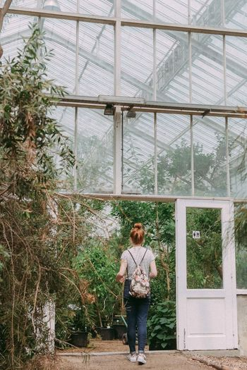 Full length of young woman standing in greenhouse