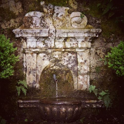 Wishing Well Holy Place Holy Spring in Aschau Bavaria Bayern Germany In The Forrest Forrest Wood Water Spring Holy Water White Magic Magic Pagan Flowing Water Flowing The Magic Mission Ancient Architectural Detail Well  Source Miles Away