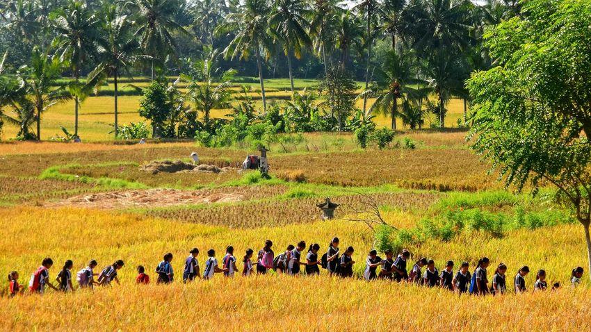 Bali - School outing Bali School Ubud Jeanmart Bali 16:9 Verybalitrip Very Bali Trip