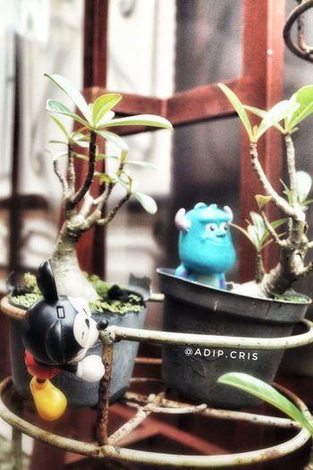 Day Outdoors No People Animal Themes Photooftheday Figurine  Mickeymouse Monsterinc Toystory Memory Sonya58 Photographer Photography Photos Photo Filter Gfx FX Effect Toysoutdoors Toys4life Toysphotogram Toysphotography Photograph Close-up