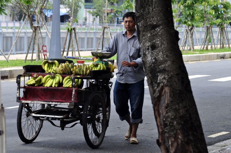 Banana vendor in street in Ho Chi Minh City, Vietnam. Bananas Fruit Full Length Hand Carts Ho Chi Minh City Real People Saigon Selling Street Trees Vendors Vietnam Workers