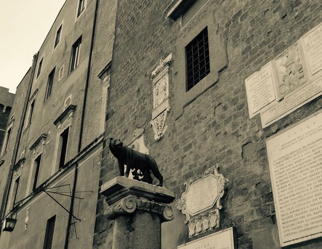 Animal Themes Architecture Art Black And White Built Structure Campidoglio Capitoline Hill Capitoline Wolf Culture Historical Sights History Italy Lookingup Mammal Roma Rome Romulus And Remus Sculpture See What I See Streetphotography The Past Wolf