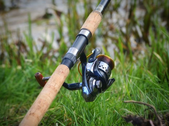 Sport Hand Tool Day Nature Fisherman Fishing Angler Rod Fishing Rod Fishing Reel Reel Wędkarstwo Wedka Relax Hobby Kolowrotek Wedkarz Wedka