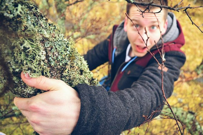 Exploring New Ground Tree Climbing Love Colours Scotland Fairytale  Morning Walk