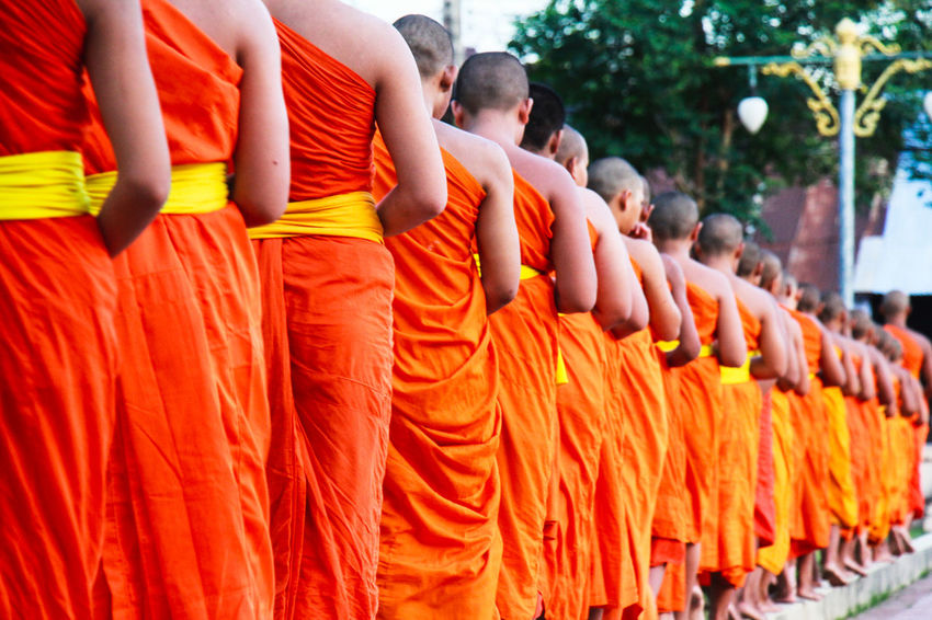 Group Of Monks In A Row Make Meditation Real Monks Religion Standing Meditation Yellow Robe