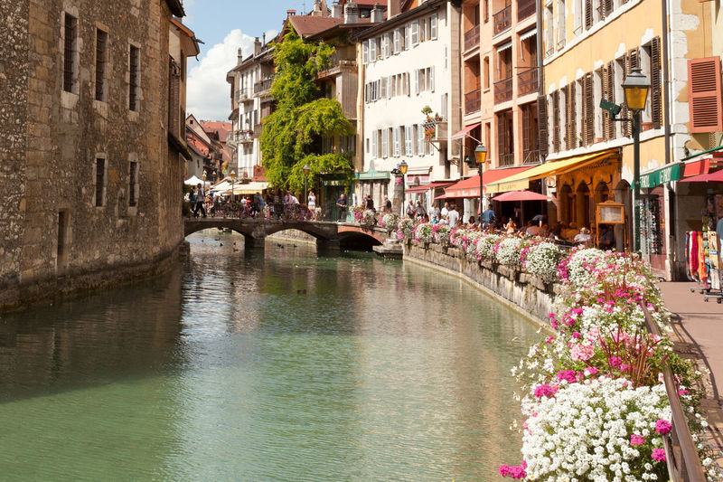 Building Exterior Architecture Old Town Built Structure Travel Destinations Outdoors Water City Day Flower Annecy France Travel Tourism Colors Stream EyeEmNewHere