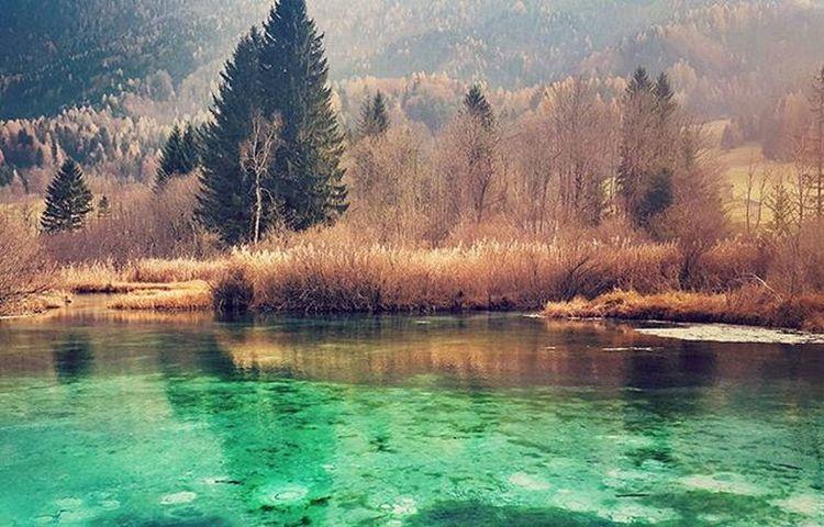Pravljica. Slovenia FeelSlovenia Zelenci FairyTail Autumn Fall Nature Lake Woods Gorgeousnature Visitslovenia Igslovenia Kampadanes November Beautifulplanet