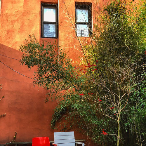 Lower East Side Garden in Manhattan Absence Architecture Branches Building Chair No People NYC Orange Color Outdoors Prescence Trees Windows