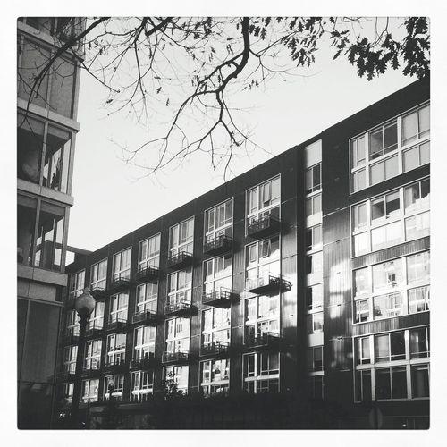O Street Market Seeninshaw shawdc Architecture Blackandwhite