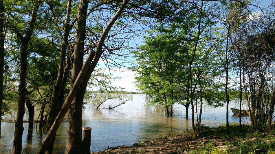 Zona de pezca (inundada) First Eyeem Photo
