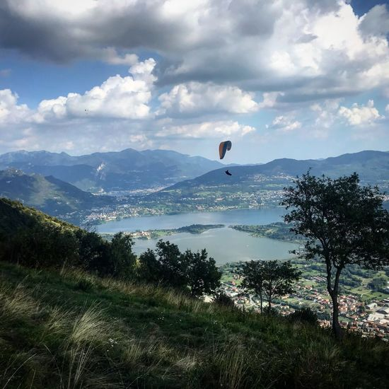 Fly on the como