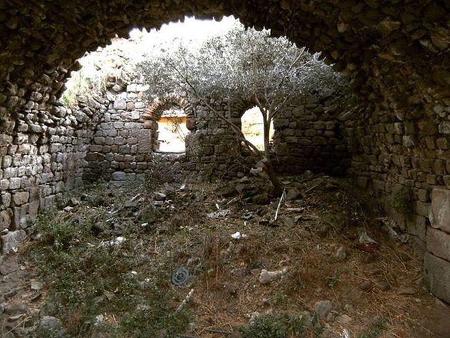 """-""""Oğlum Sanço, ne zamandan beri şatoları baş aşağı inşa ediyorlar? Bir şato görüyorum ancak, çatısı aşağı bakıyor."""" -"""" Hangi yanlışınızı düzelteyim, senyör? O gördüğünüz şato değil handır! Başaşağı olan han değil sizsiniz!"""" Donkisot Donquijote DonQuixote Han Tashan Bergama Restoration Ruins Ruined"""