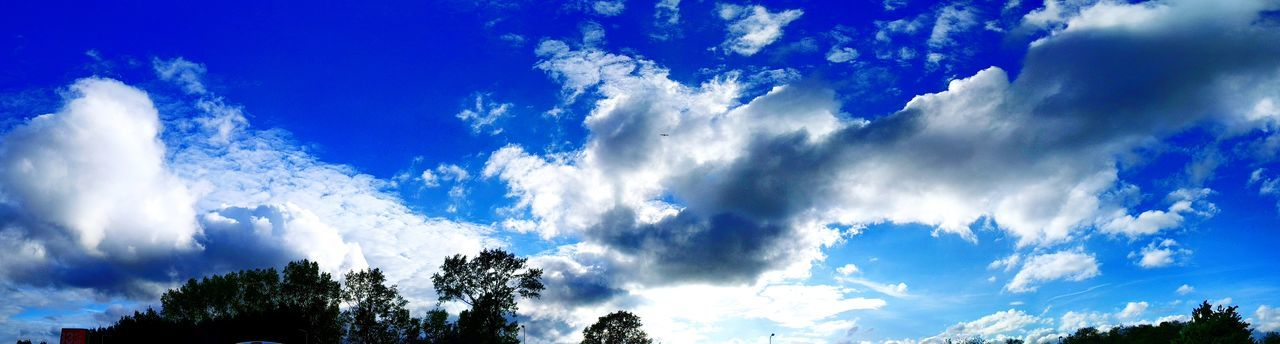 Panoramic Sky Cloud - Sky Tree Sky Nature Blue Outdoors No People Day Power In Nature Storm Cloud Beauty In Nature Freshness White Clouds Sunlight Art Is Everywhere Full Frame Landscape Shades Of Blue Panoramic