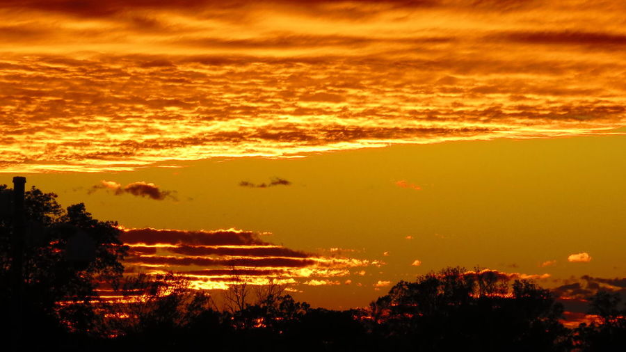 Blazing Sky Sunset Orange Color Tree Beauty In Nature Silhouette Nature Outdoors No People Scenics Sky Red Vacations Mountain Tree Area Forest Fire Day Clouds And Sky Clouds Clouds In Sky