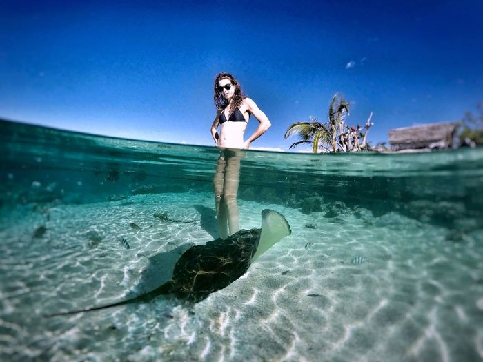 Young woman standing by stingray in sea against clear blue sky