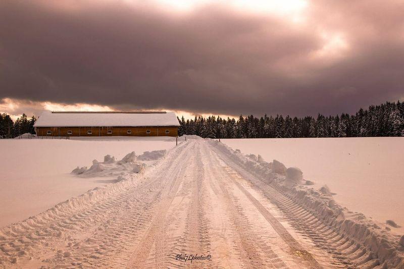 Taking Photos Landscape_photography Winter Landscape Landscape_Collection Wintertime Sunset_collection Taking Photos Snow ❄ Cold Winter ❄⛄