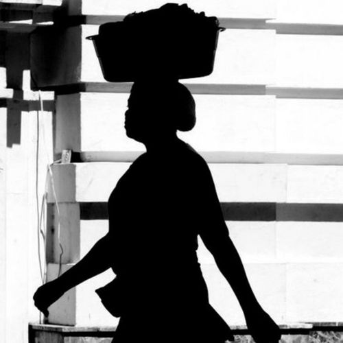 Marchanta Santiaguera. Photography Notphonephoto Shadow siluette Santiagord charlieimages