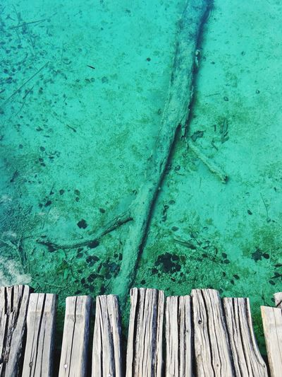 IPhoneography Lake Nature Plitvice National Park Wallpaper Green Water Art