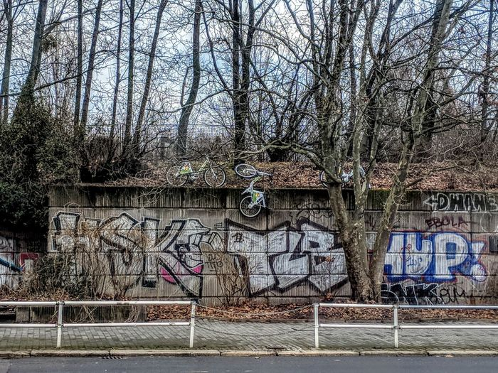 Graffiti on wall by bare trees against sky