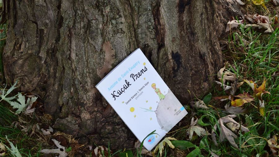 Littleprince Thelittleprince Kucukprens Bookoftheday Books Book Text Communication Day Western Script Nature Plant Sign