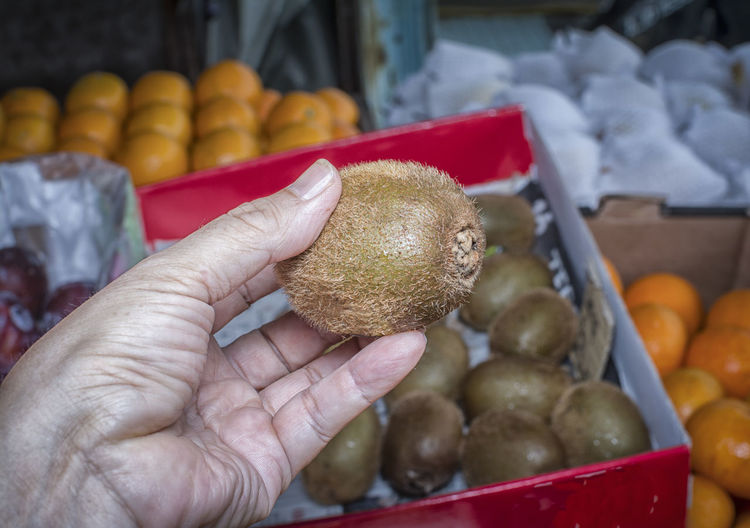 kiwifruit Finger Focus On Foreground Food Food And Drink For Sale Freshness Fruit Hairy  Hand Healthy Eating Holding Human Body Part Human Finger Human Hand Kiwifruit Market One Person Real People Retail  Retail Display Unrecognizable Person Wellbeing