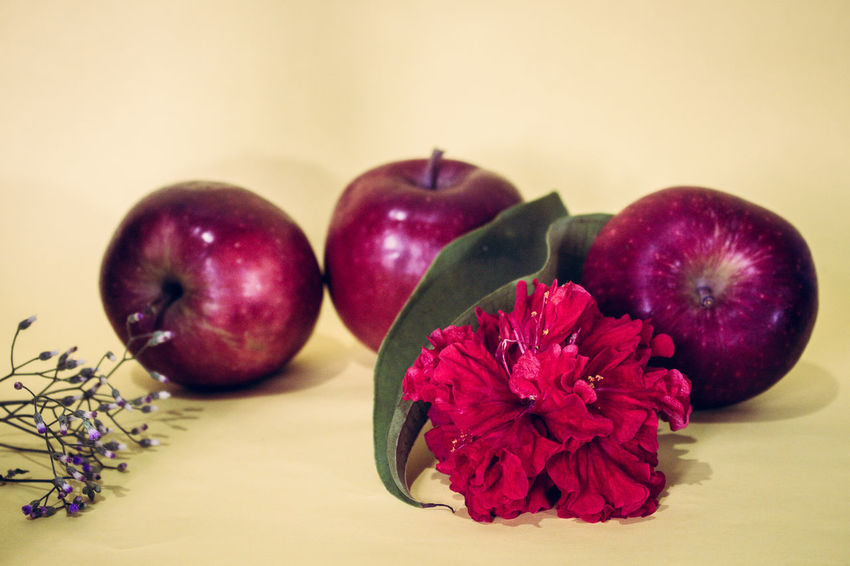 Apple Photography Apples Close-up Day Flower Food Food And Drink Freshness Fruit Healthy Eating Indoors  No People Red Apples Still Life Studio Shot Table