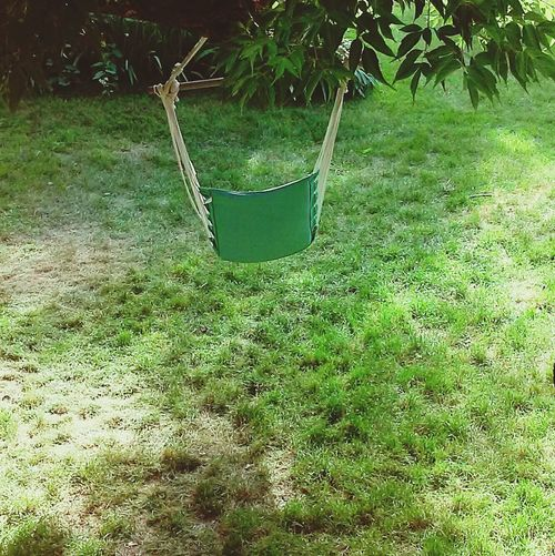 Grass Green Color Growth Outdoors No People Lawn Front Or Back Yard Day Nature Swing Plant Tree