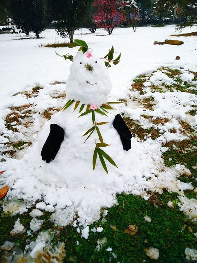 Snow ❄ Snowman⛄ Wintersweets Banboo Grass Early Spring Morning Still Cold Outside 😤 Happy :) With Friends