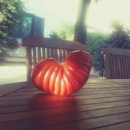 Tomato Heart ❤