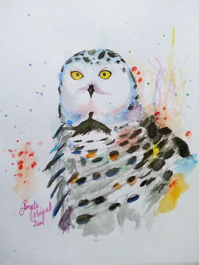 :3 Life Nature Art, Drawing, Creativity Owl Bird Desenho