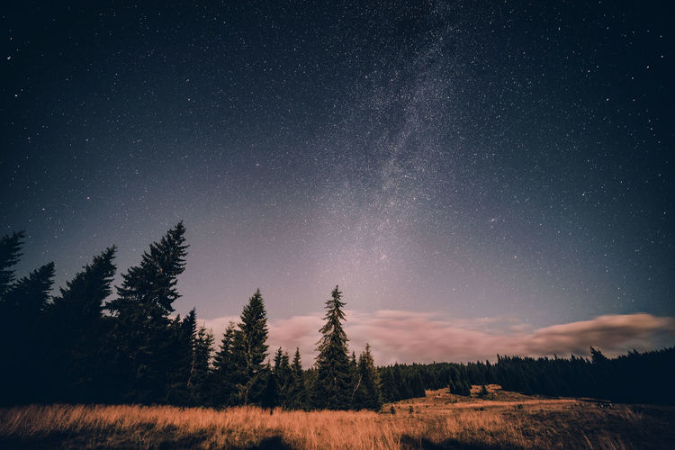 Astronomy Dark EyeEm Nature Lover Forest Galaxy Landscape Landscape_Collection Low Angle View Milky Way Milkyway Nature Nature Nature_collection Night Night Photography Nightphotography No People Non-urban Scene Outdoors Romania Sky Star Star - Space Star Field Eyeemphoto